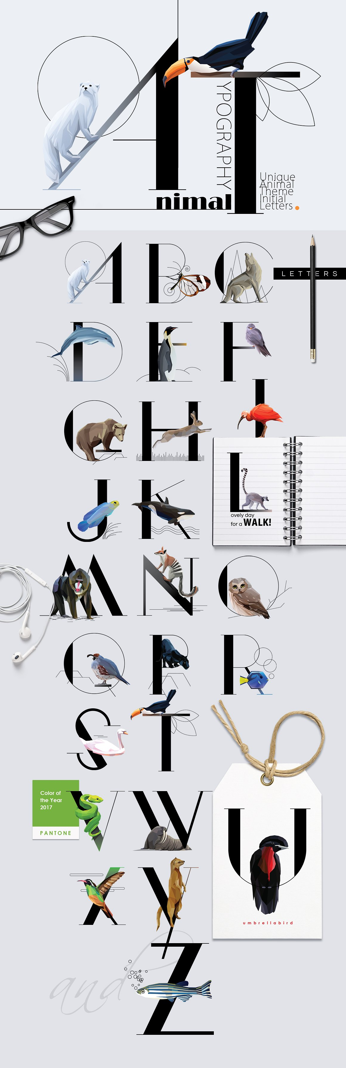 Animal Typography by Polar Vectors