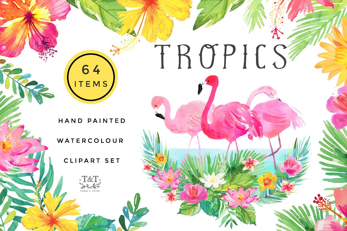 Tropical Watercolour Clipart Set by Twigs and Twine