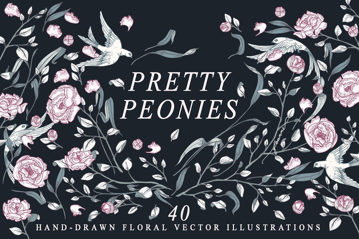 Pretty Peonies Floral Illustration Collection by Feanne