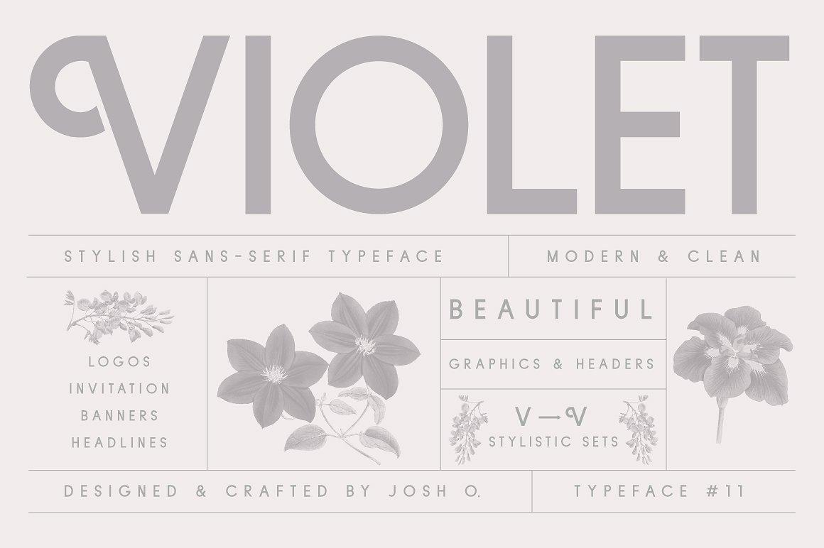 Violet | A Stylish Sans Serif