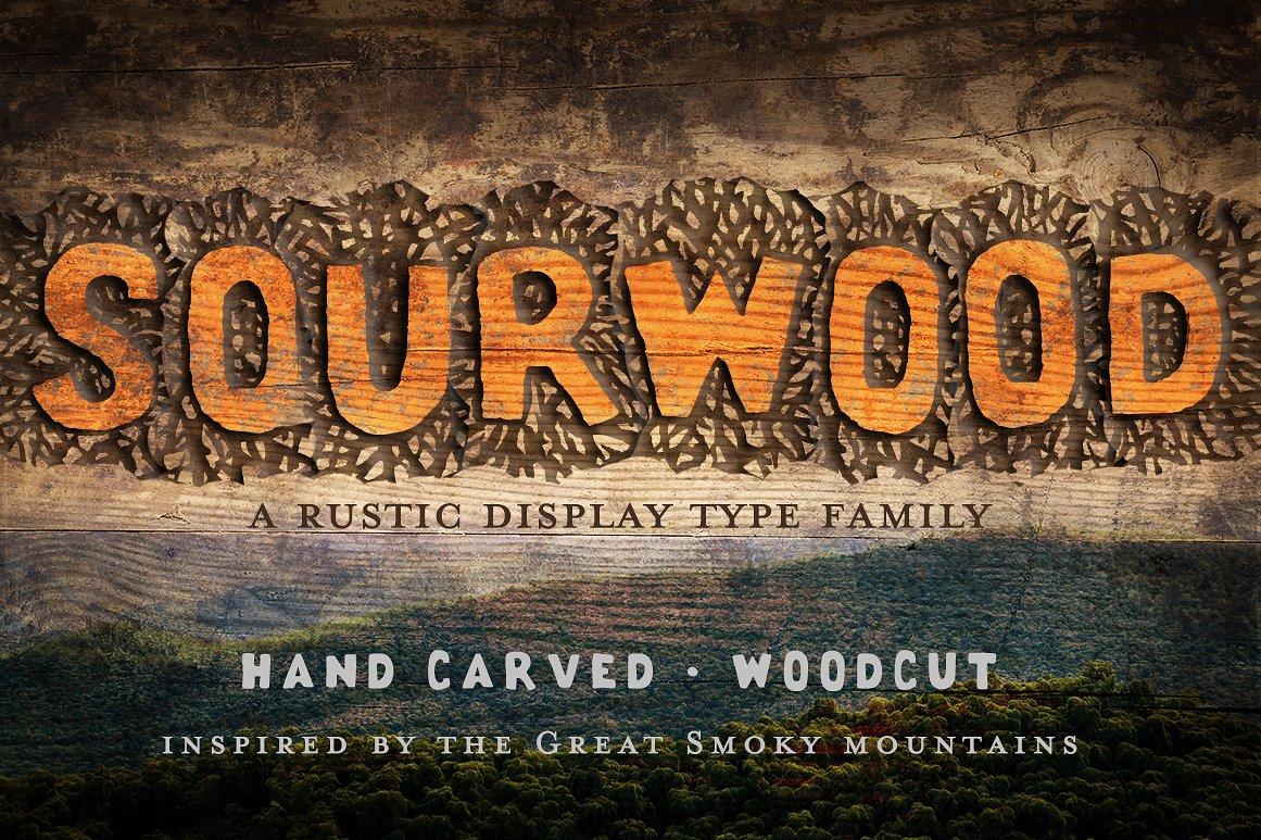 Rustic Wood Display Type by Rachel Ortiz